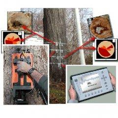 TRU树干及树根探测雷达系统